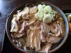 aoki-nikusoba